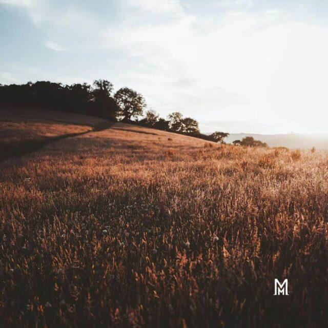 Ο τρόπος που αλλάζει τα χρώματά της η φύση, δεν είναι μαγικός;   #autumn #miameramagiki